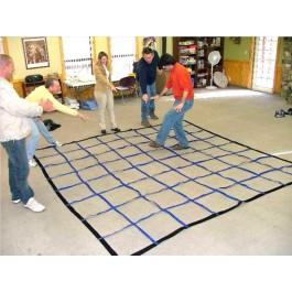 Activity Grid horizontal spider web